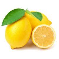 citron fournisseur
