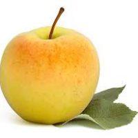 pomme jaune fournisseur