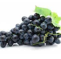 raisin bleu fournisseur