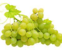 raisin vert local