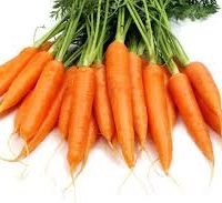 carotte en feuille bio de la ferme