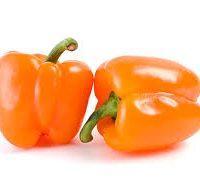 poivron orange local