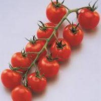 tomates apéro