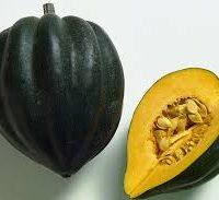 courge acorn