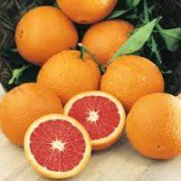 8 orange cara cara